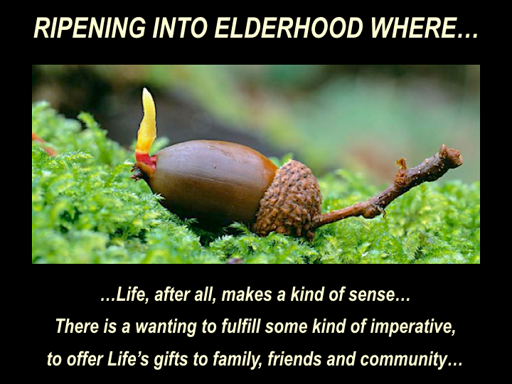 EoE 19 Ripening Into Elderhood